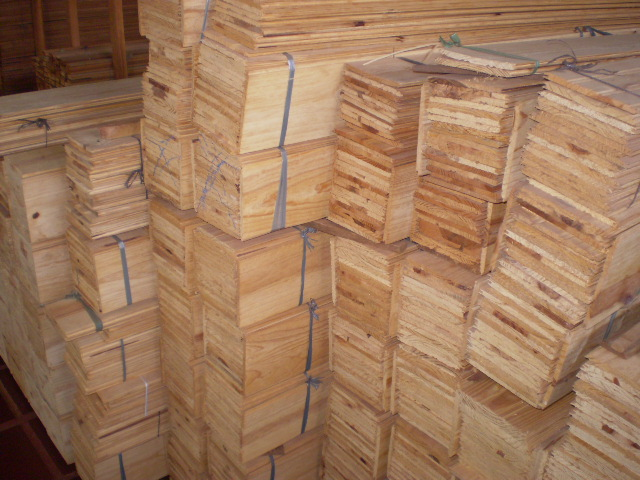 Forro de Pinus
